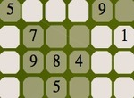 Sudoku-with-a-spider-web